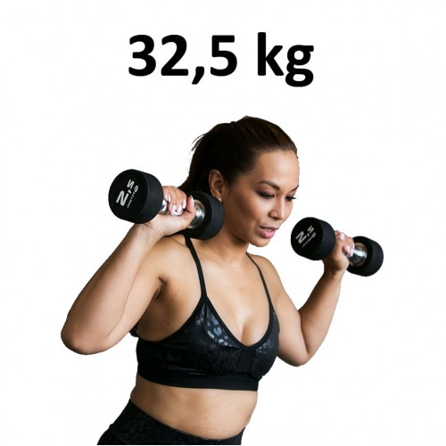Premium Gummihantel Master Fitness 32,5kg